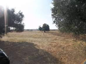 Terreno en venta en Camino Cuervo