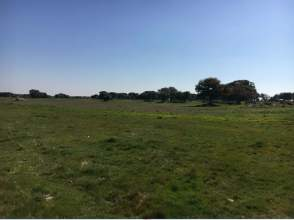 Terreno en Carretera Nacional Zamora