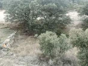 Terreno en calle Paraje Carrasca Hueca Parcela 726 Poligono 22