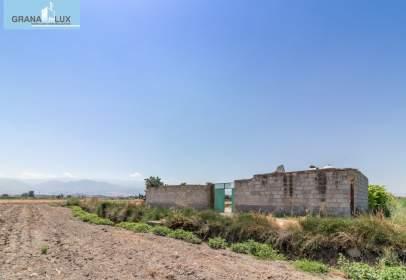 Terreny a calle Pago de Danavenaroz