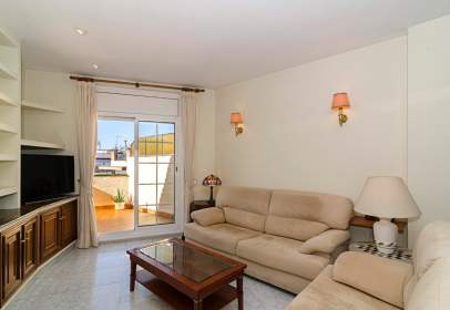 Flat in Els Molins-Poble Sec-Pins Vens