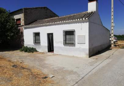 Rural Property in calle Poligono 4 Parcela 4
