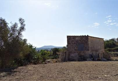 Rural Property in Maria de La Salut
