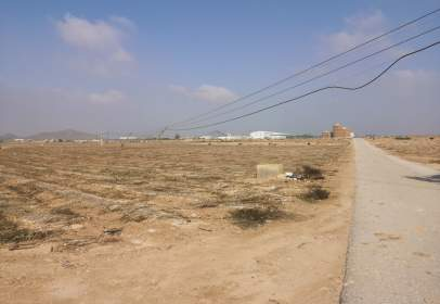 Rural Property in Fuente Álamo