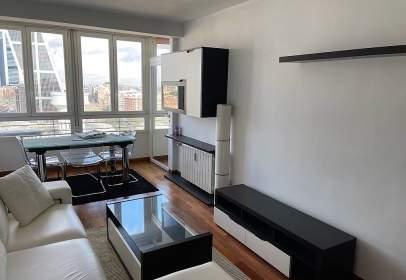 Apartamento en Paseo de la Castellana, cerca de Calle de Félix Boix