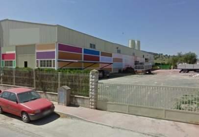 Nave industrial en calle Olivo Manzanillo