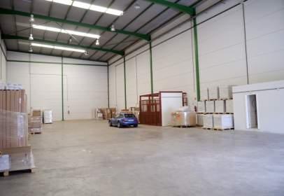 Industrial Warehouse in calle del Beneficiado José Estupiñán