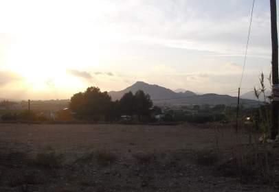 Terreny a Carretera Aspe-Crevillente