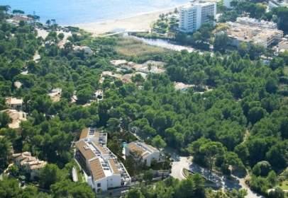 Apartamento en Carretera de les Coves de s'Ermita,  s/n