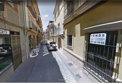 Piso en calle Obispo Domingo Valdecañas, nº 17