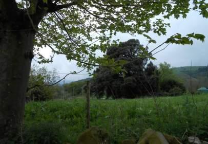 Terreno en Karrantza