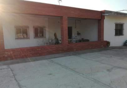 Finca rústica a calle Camino Torrellano