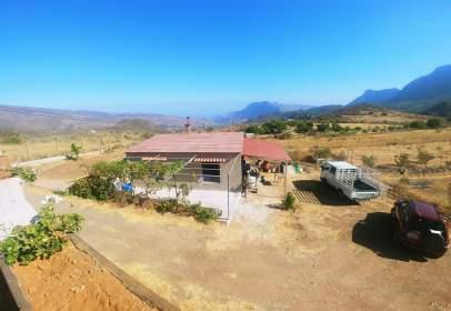 Rural Property in calle Llano del Seguero