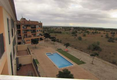 Flat in Campos