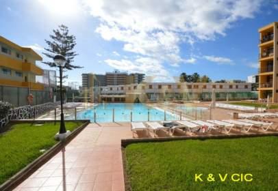 Apartamento en calle Playa del Inglés 2 Dorm 60M2 Cerca del CC Yumbo