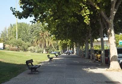 Pis a calle Catalán Sañudo