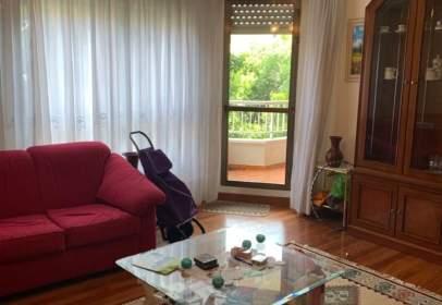 Apartamento en calle Silvestre Ochoa