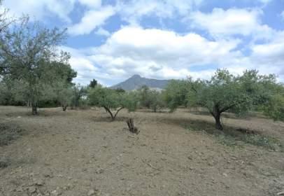 Terreno en calle Sierra Cazorla, nº 465