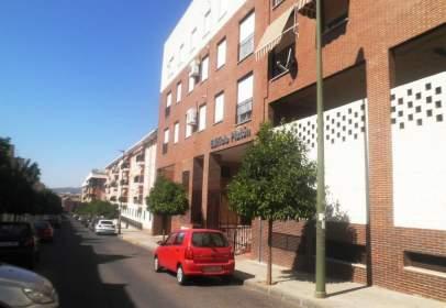 Apartament a calle de Platón, 17