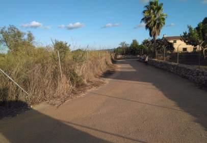 Rural Property in calle Diseminado Poligono 2, nº 254