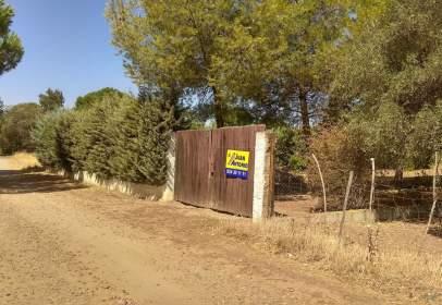 Rural Property in calle Diseminado Diseminados, nº 148