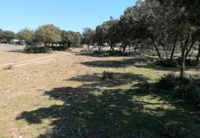 Land in Otero de Herreros