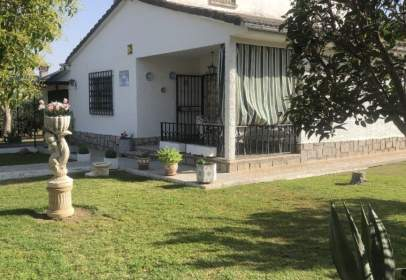 Casa unifamiliar a calle Paloma