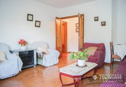 Pis a Periurbano-Alcolea-Santa Cruz-Villarrubia-Trassierra