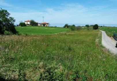 Terreny a Oriente - Colunga