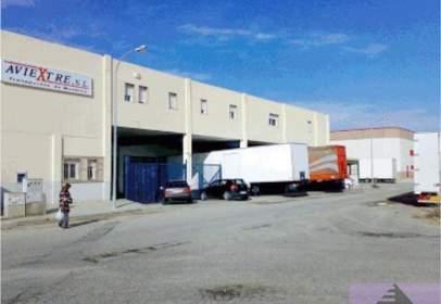 Nave industrial en Poligono San Isidro