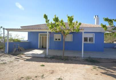 House in Novelda
