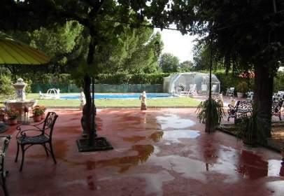 Rural Property in Miguelturra