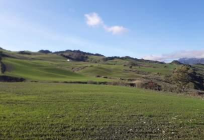 Rural Property in Carretera Montecortp Sn