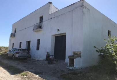 Finca rústica a Este - Pago San José