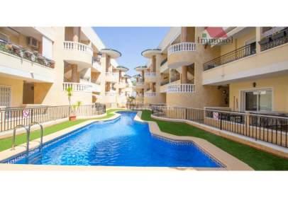 Apartamento en Jacarilla
