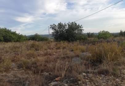 Land in Llombai