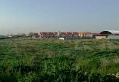 Terreno en calle Siglo XXI S/N, Polig 47, Parc 1-Zamora