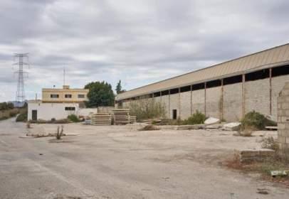 Industrial Warehouse in Carretera de Garrucha