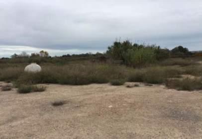 Land in calle Rincon de La Piedra Polg.45 Parc.114