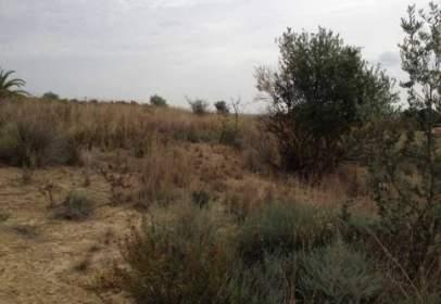 Land in calle S-3A Les Valletes. Pol 3, Parcela 262