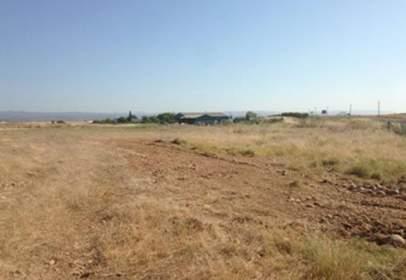 Terreno en Carretera de Posadas S/N, Pg 12 Pc 34-35