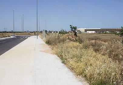 Land in Avenida Manuel Goda Ros Parcela IV.20 Sector S-15