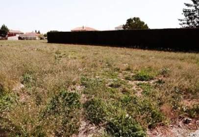 Land in calle de Juan XXIII, nº 1