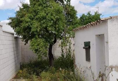 Rural Property in calle San Blas