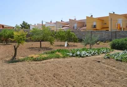 Terreno en calle Cerrillo