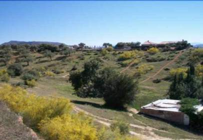 Terreno en calle Pda. Llanos de los Puentes - Las Paredillas -