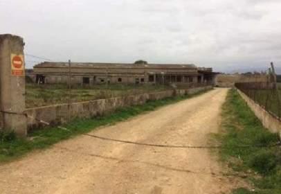 Industrial Warehouse in calle Diseminados Can Corritx Es Velar San Martin, nº Polig 9