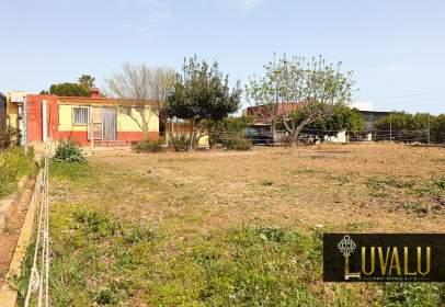 Rural Property in Las Atalayas-U.R.M.I.-Cerro-Mar