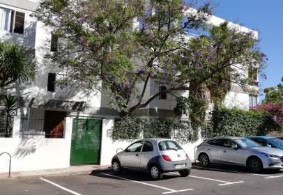 Estudi a Salamanca-Uruguay-Las Mimosas