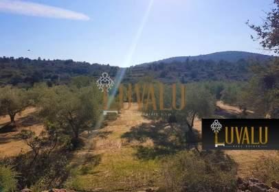 Rural Property in Cervera del Maestre